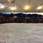 Winter Fest Snow Village